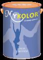 son-mykolor-ilka